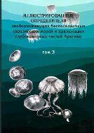 Иллюстрированные определители свободноживущих беспозвоночных евразийских морей и прилегающих глубоководных частей Арктики. Том 3