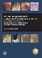 Атлас Эндоскопии Пищеварительного Тракта. Джонатан Коэн